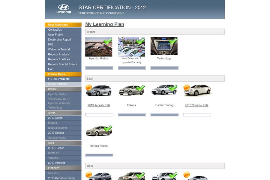 Hyundai Star Portfolio Graphic 2