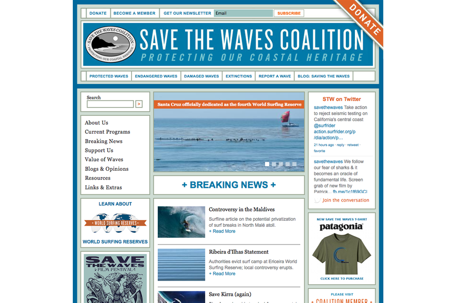Save The Waves Coalition Portfolio Graphic 1