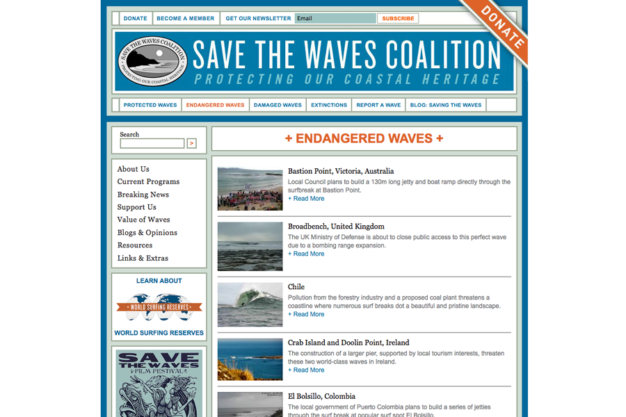 Save The Waves Coalition Portfolio Graphic 2