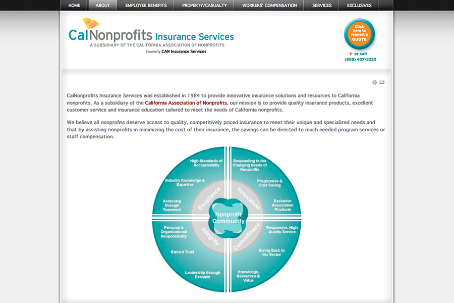 CalNonprofits Insurance Services Portfolio Graphic 2