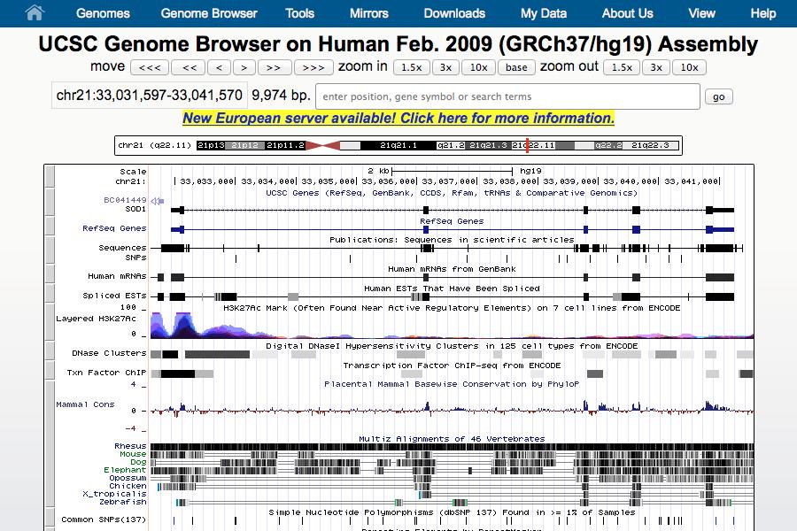 UCSC Genome Project Portfolio Graphic 2