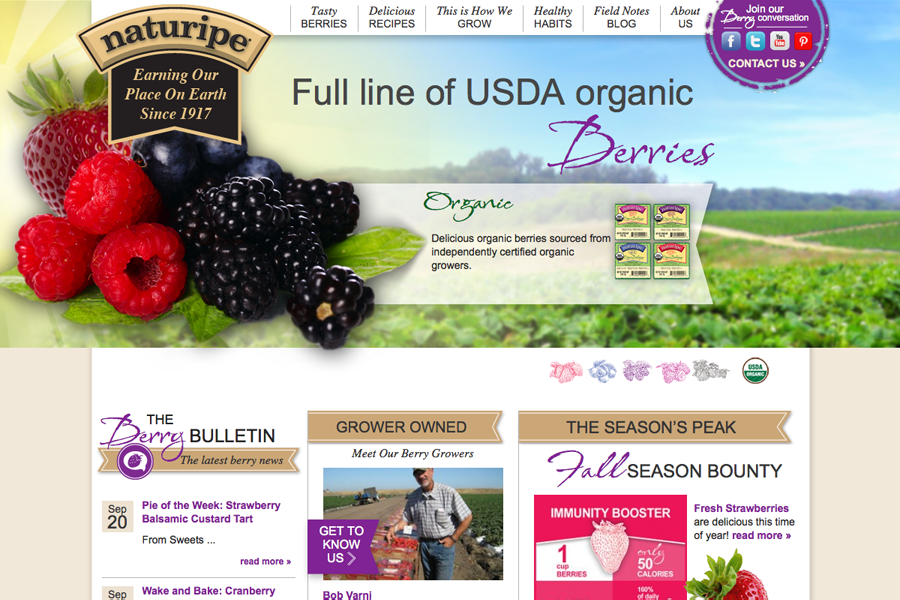 Naturipe Farms Portfolio Graphic 1