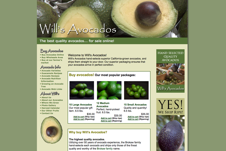 Wills Avocados Portfolio Graphic 1