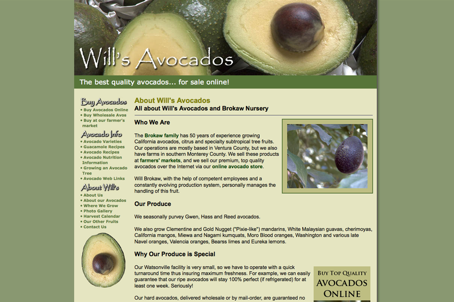Wills Avocados Portfolio Graphic 3
